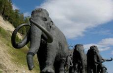 Путеводитель по Ханты-Мансийску: что посмотреть и куда пойти