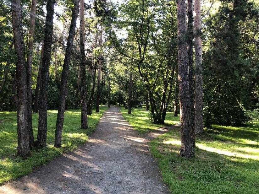 Парк «Зеленая роща»