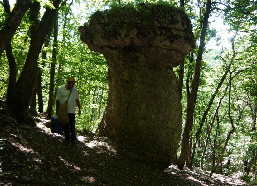 Каменные грибы в Ивановой балке