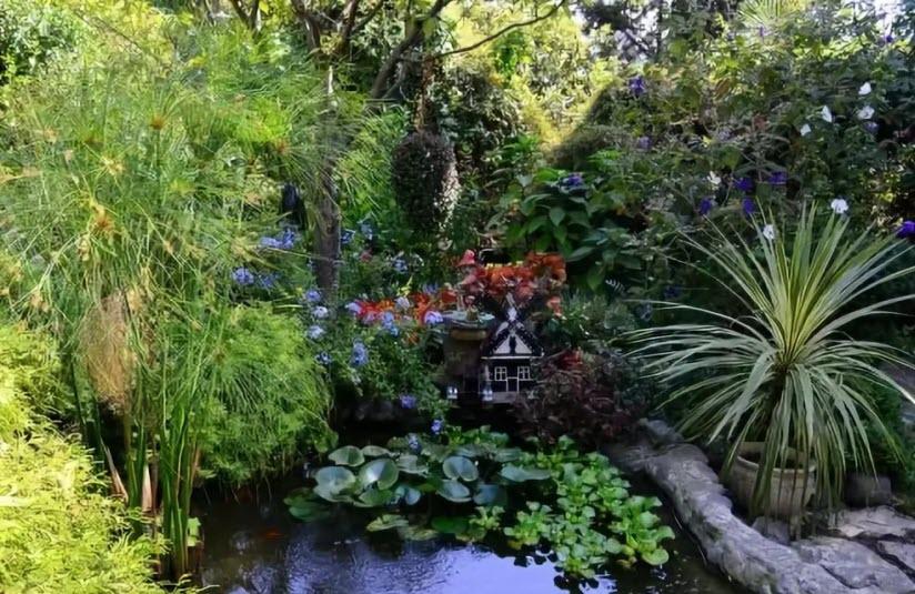 Ботанический сад «Фитофантазия»