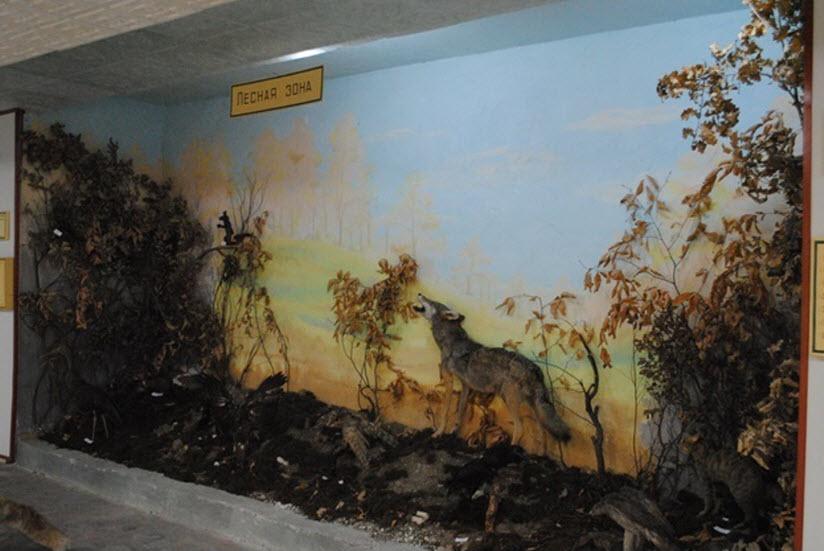 Музей природы Прикаспия