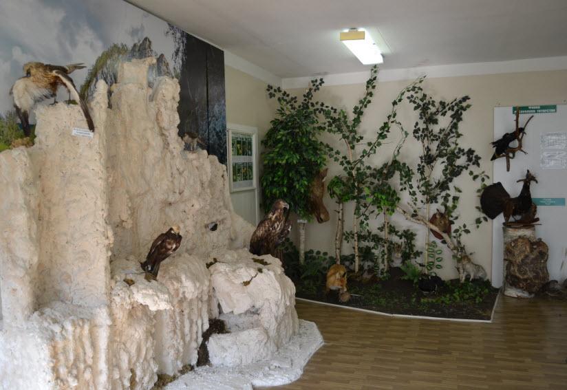 Музей экологии