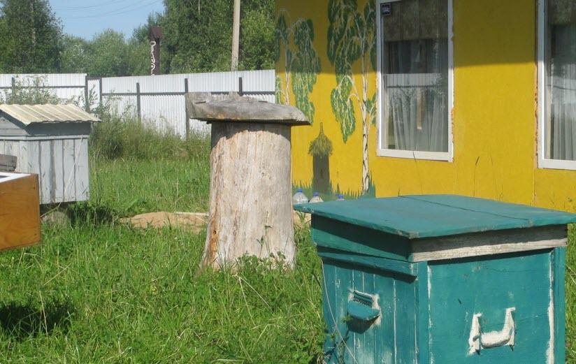 Музей пчеловодства