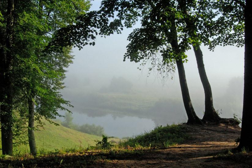 Тригорский парк