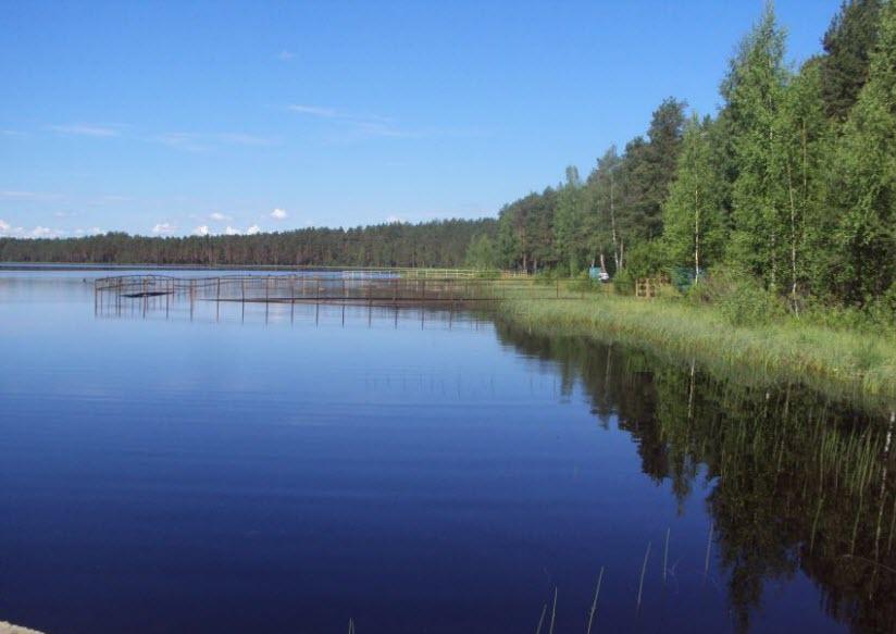 Царицыно озеро