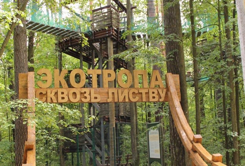 Экологический парк «Дерево-дом»