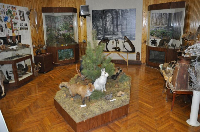 Музей «Лесные истоки»