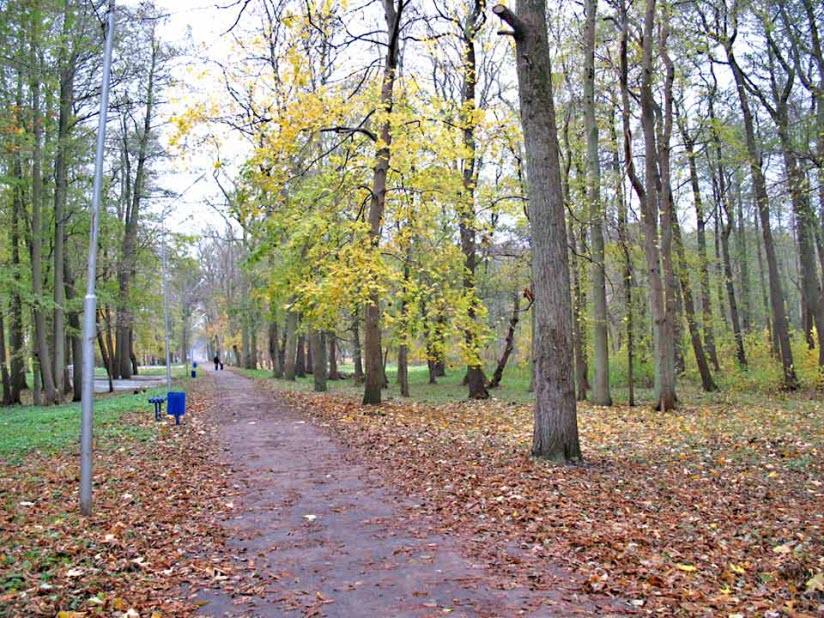 Парк культуры и отдыха имени Головко