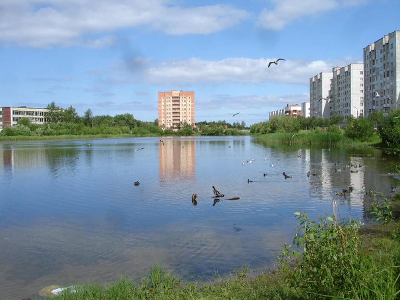 Чаячье озеро