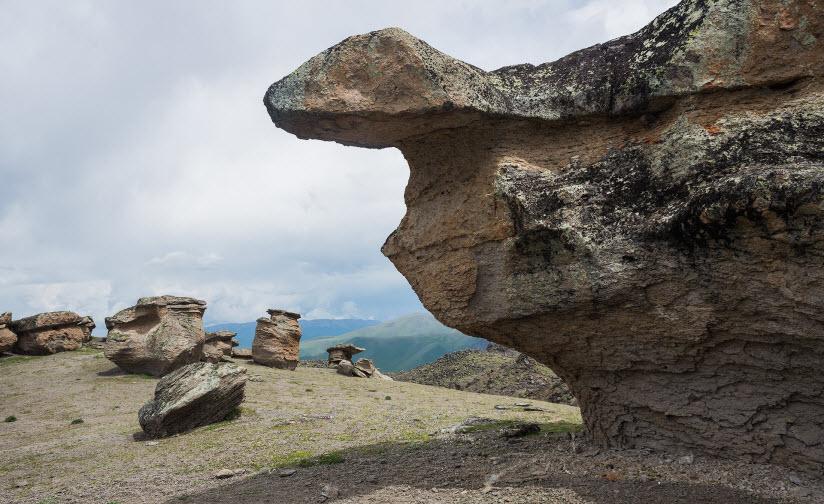 Долина каменных грибов