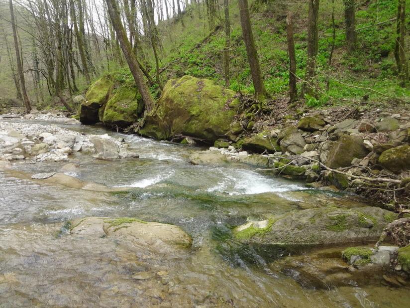 Ущелье у ручья Цыпка