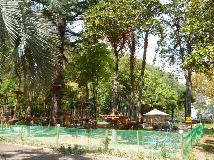 Веревочный парк Джунгли