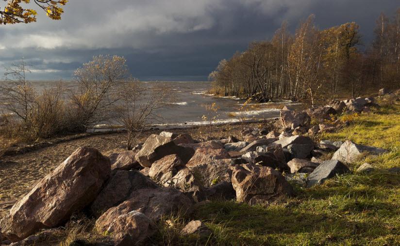 фото парка Дубки