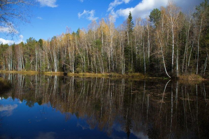 Стоянка на берегу Чашкинского озера