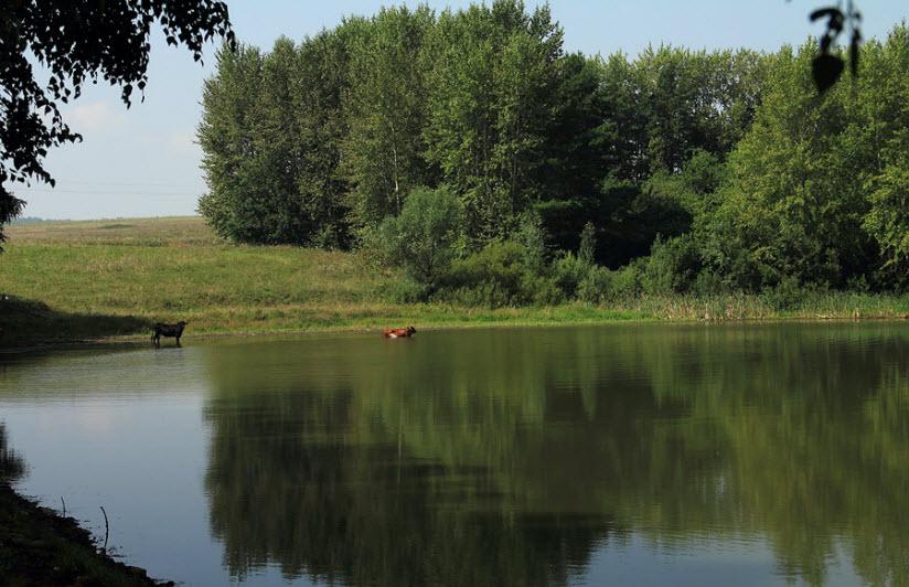Озеро Сюткюль