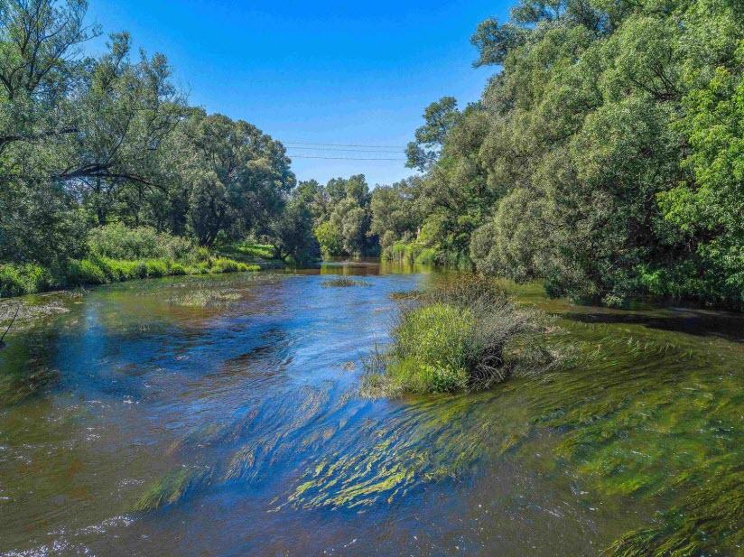 Река Анграпа