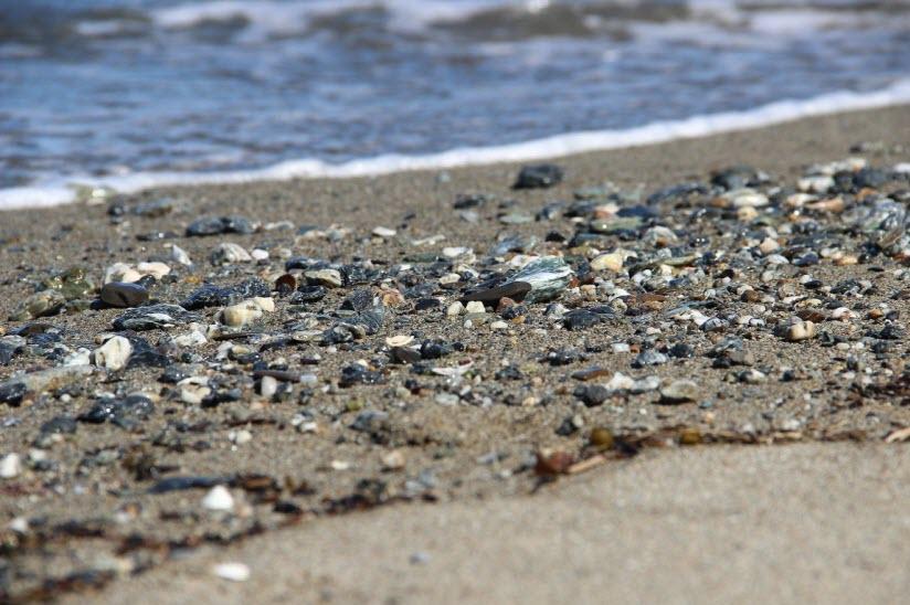 Стародубский пляж