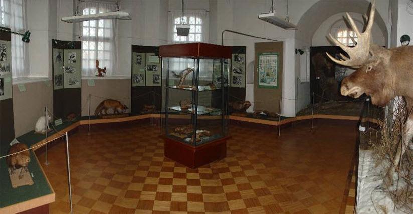 Музей природы Селигерского края