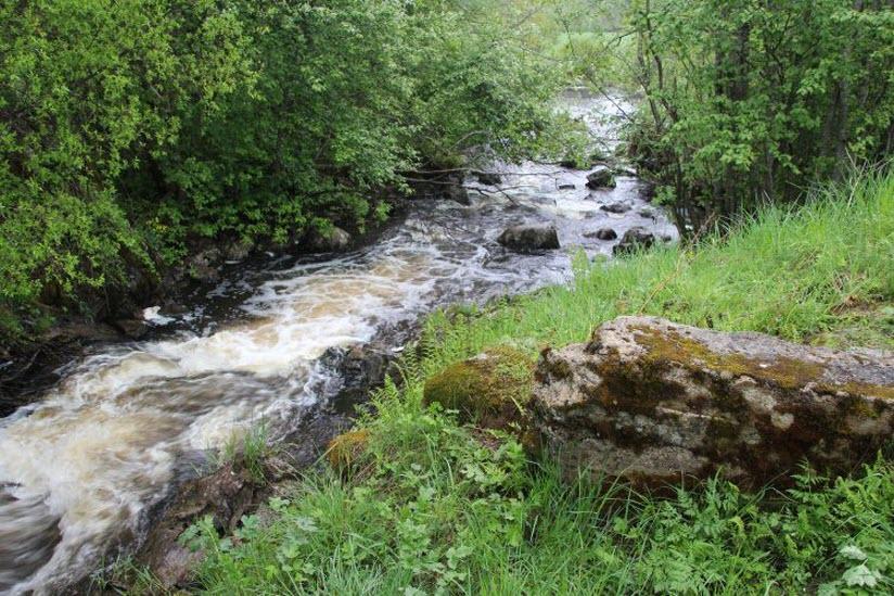 Река Тервунйоки