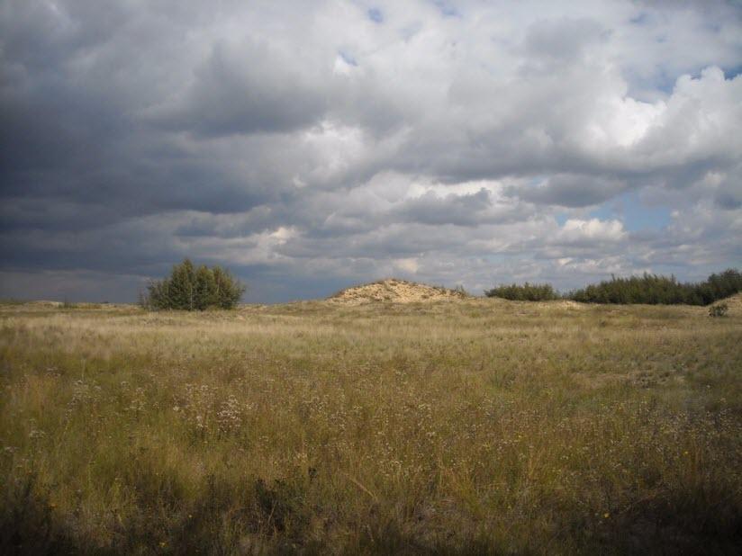 Усть-Медведицкий природный парк