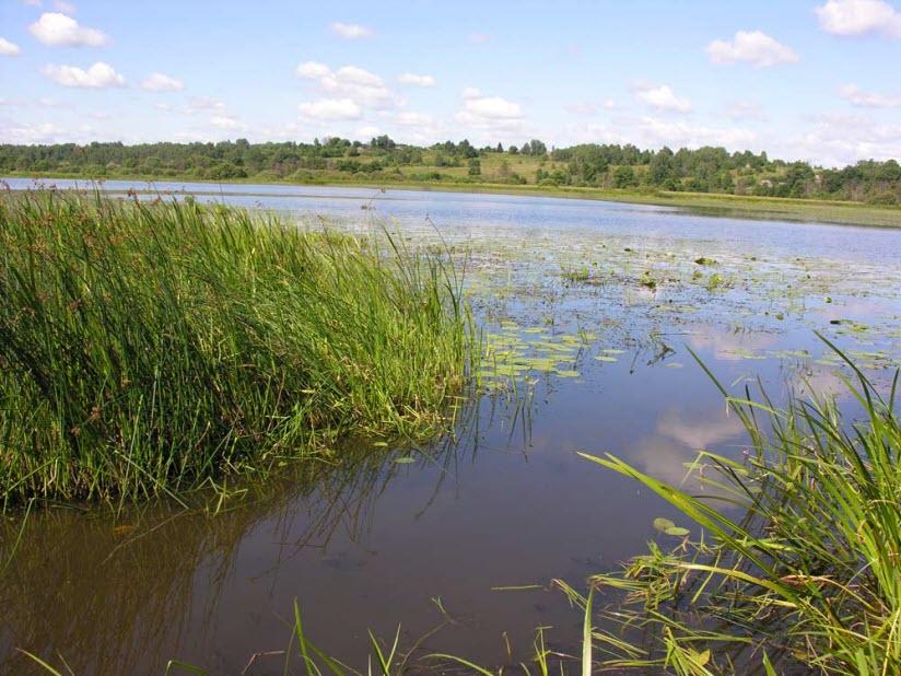 Ореховое (Коляное) озеро