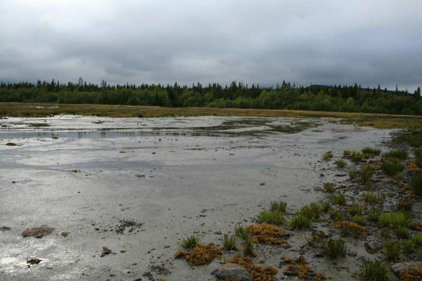 Лечебные грязи Палкиной Губы