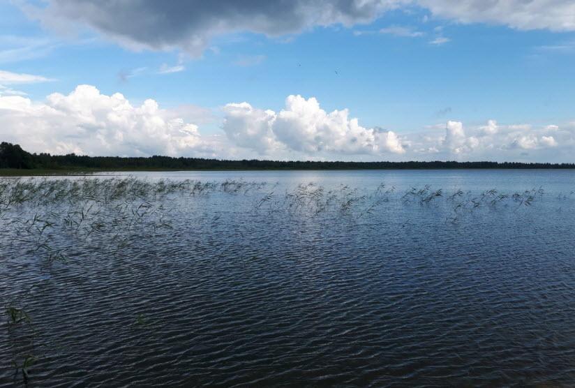 Озеро Гороховое