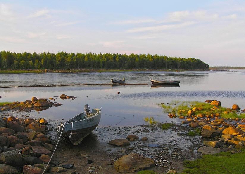 Река Летняя