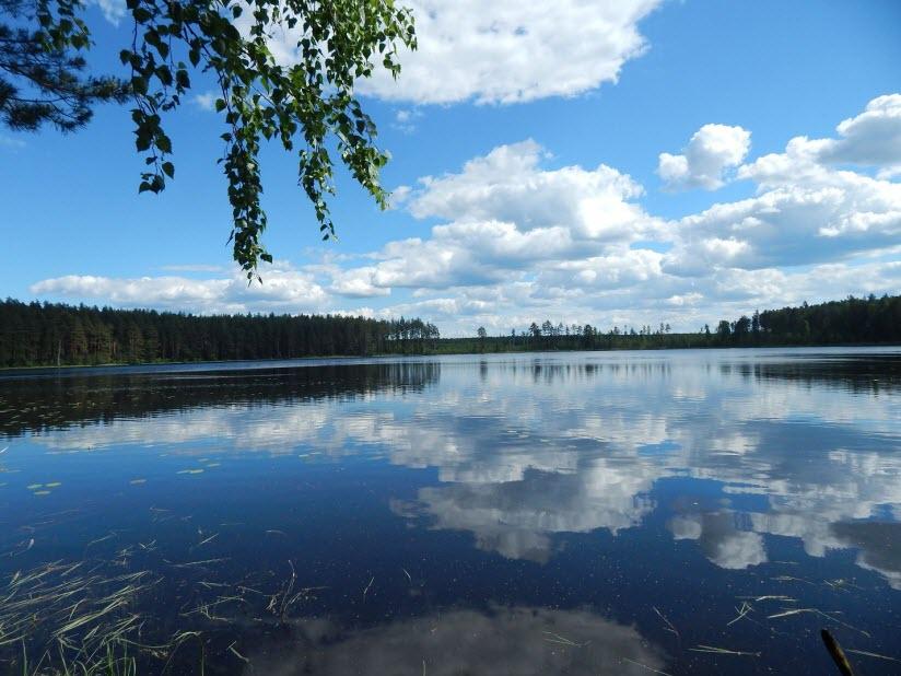 Шумновские озёра