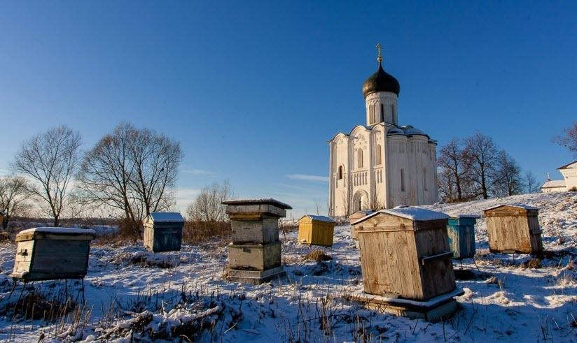 Пасека у церкви Покрова-на-Нерли