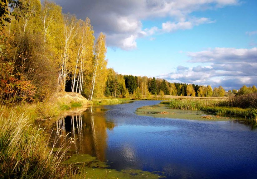 Река Санохта