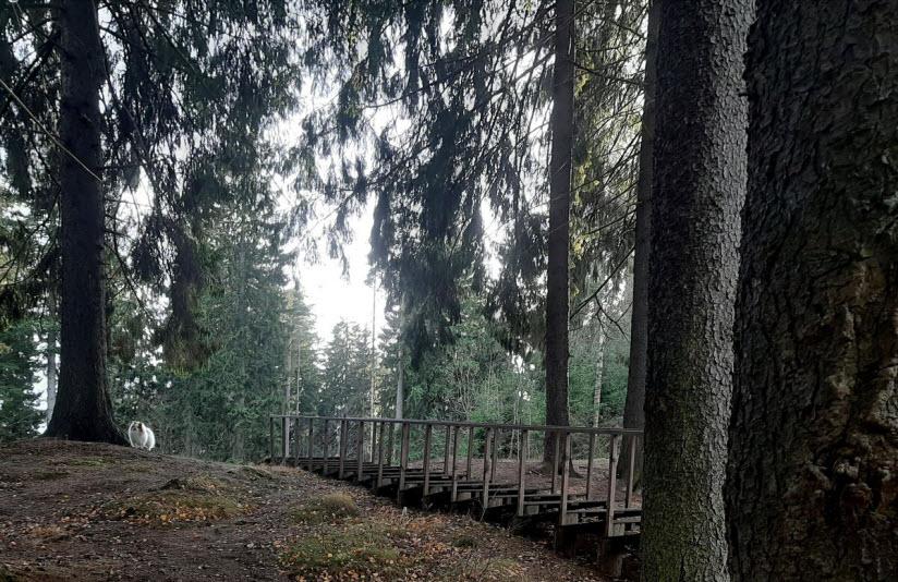 Румболовский парк