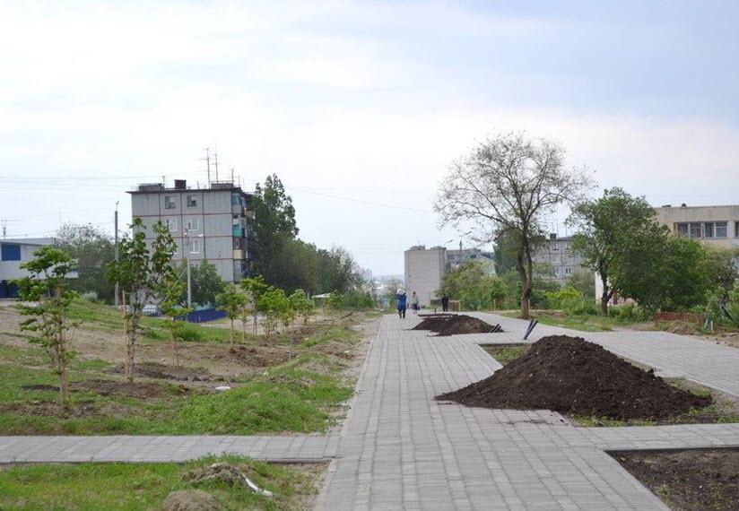 Каштановая аллея имени Евгения Мартынова