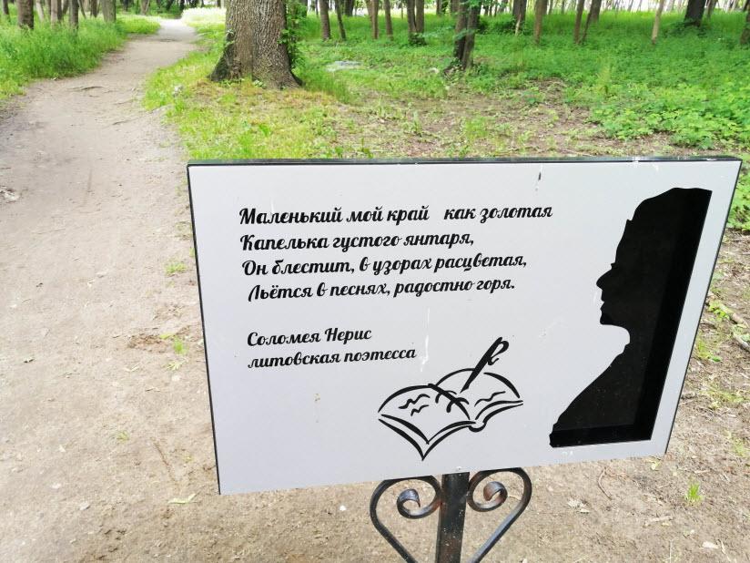 Литературно-янтарная тропа
