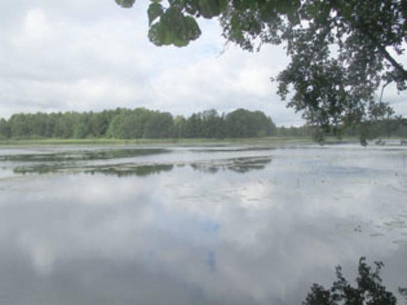 Озеро Большое Иваньковское