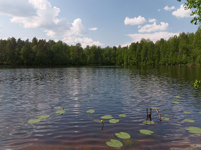 Озеро Шильма
