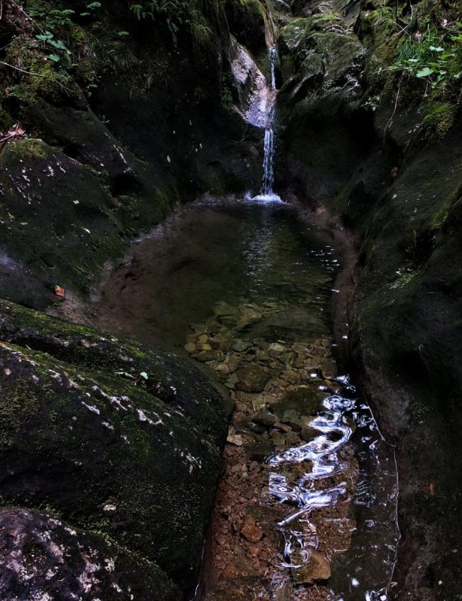 Пальмовый водопад