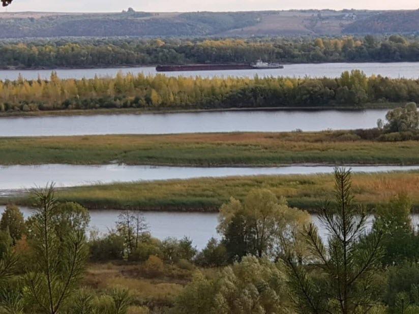 Устье реки Илеть