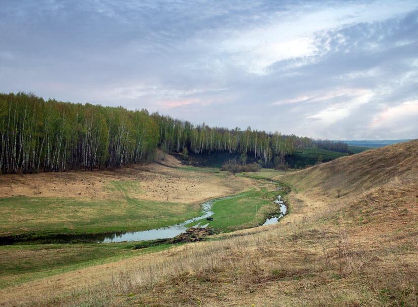 Водяное поле