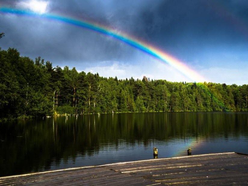Озеро Селецкое (Корневское)