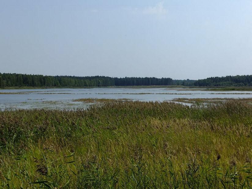 Озеро Вашутинское