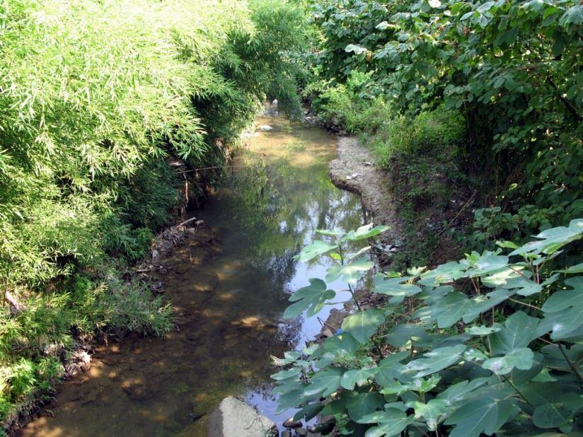 Река Адзлагара