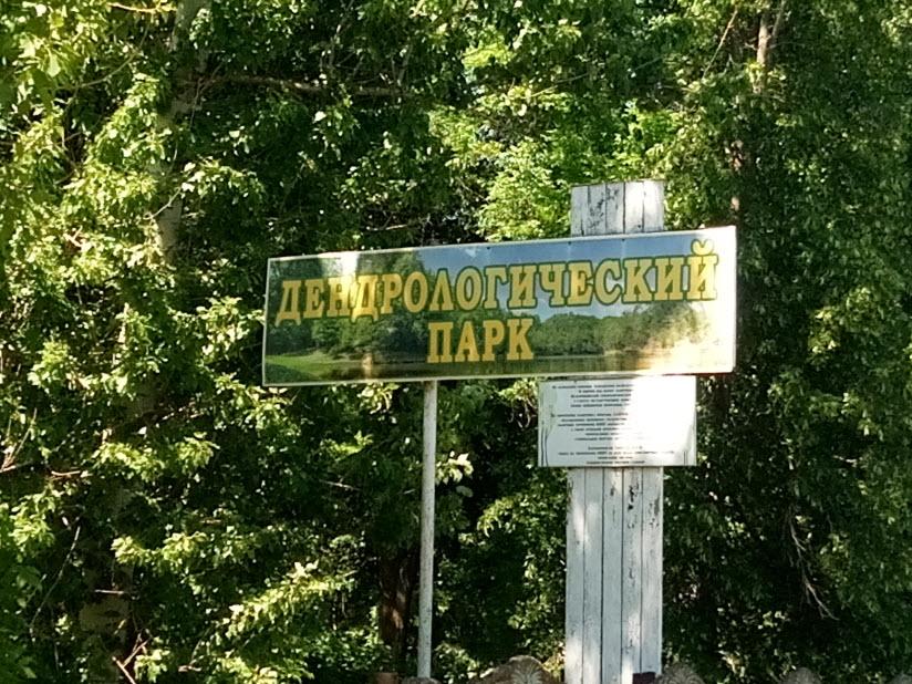 Екатерининский дендрологический парк