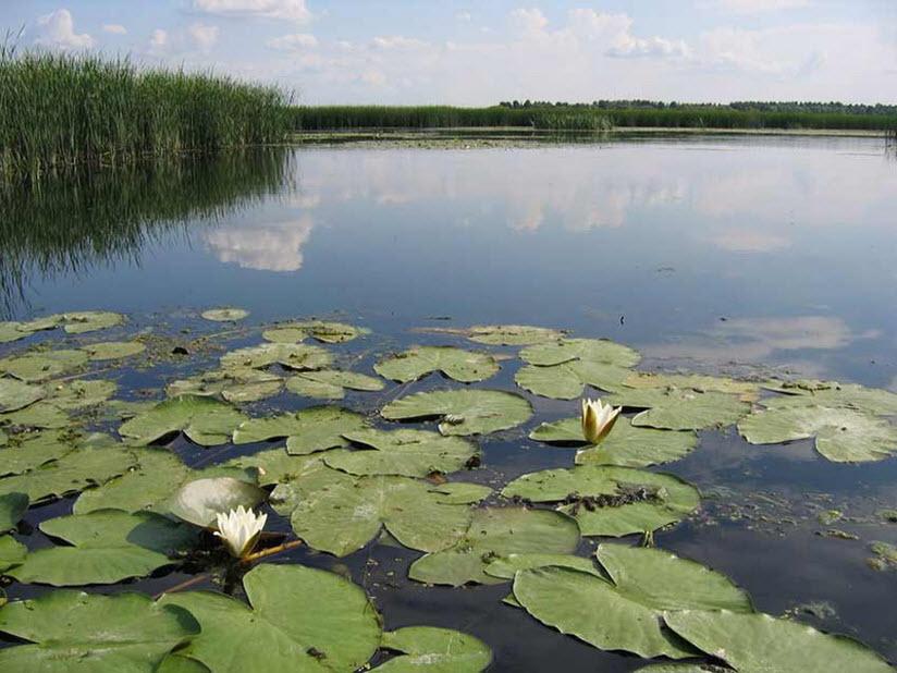 Озеро Рамза
