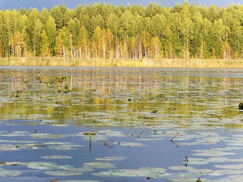 Озеро Становое