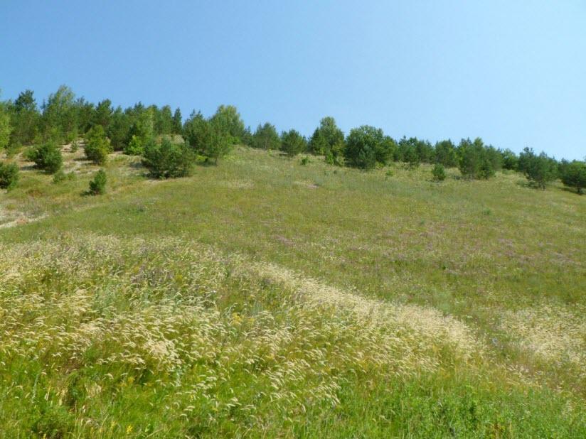 Субботинские склоны