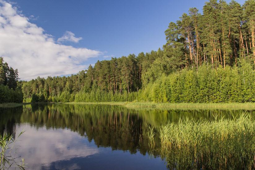 Озеро Чваниха