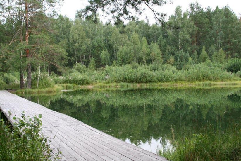 Озеро Центральное