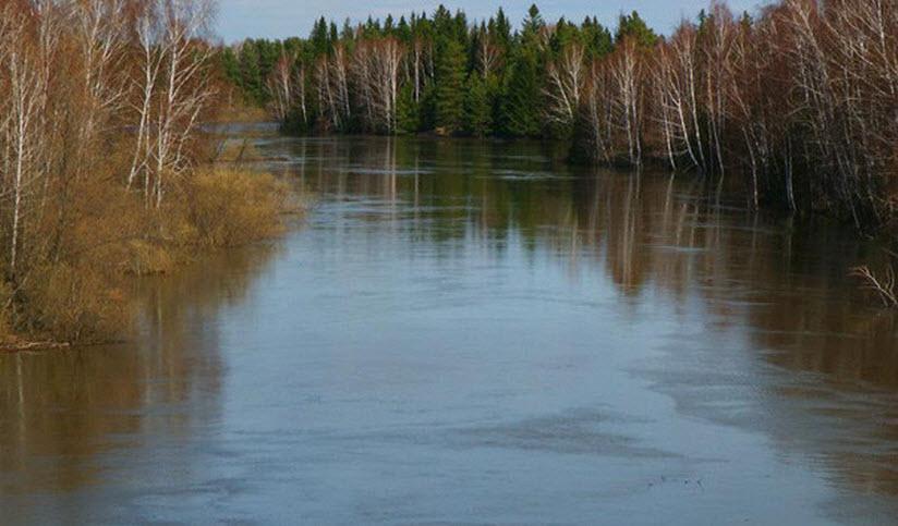 Система Черноковских озер