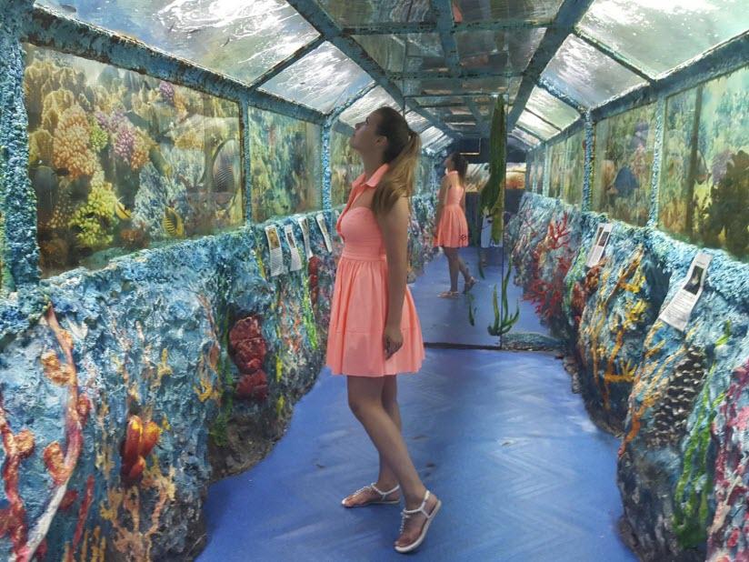 Туннельный океанариум «Океания»